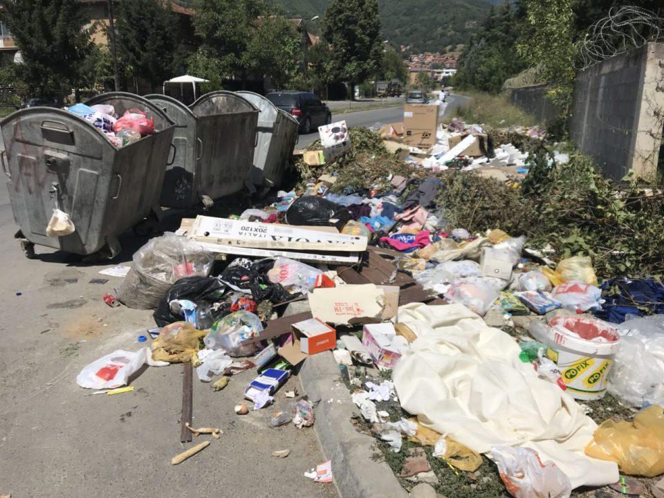 ФОТО: Тетово во екот на летната сезона тоне во ѓубре, граѓаните стравуваат од ширење на заразни болести