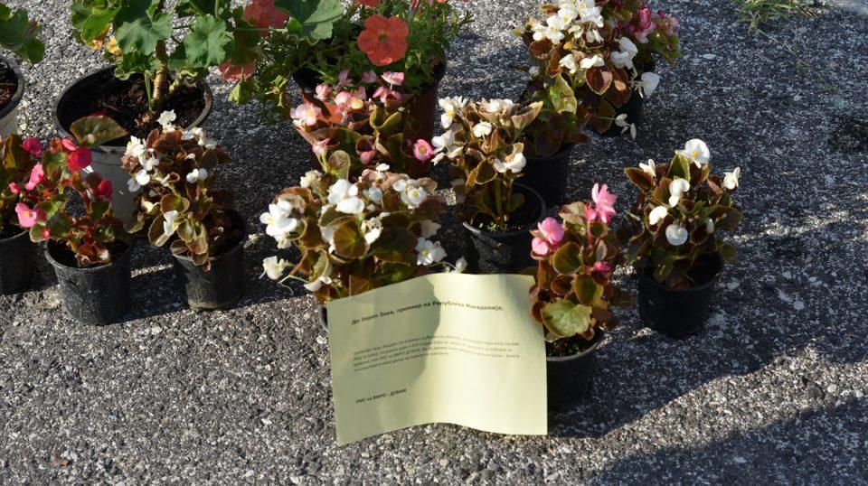 УМС на ВМРО-ДПМНЕ до Заев: Ви ги даваме овие цвеќиња гратис, земете ги и заштедете некој денар од парите на граѓаните