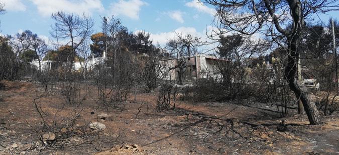 Се зголеми бројот на жртвите од пожарите во областа Атика