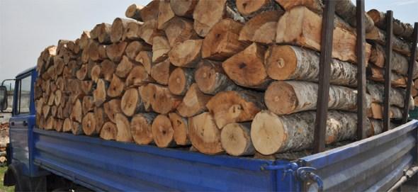 Бидете внимателни: Измама со огревни дрва, ова е тактиката на измамниците