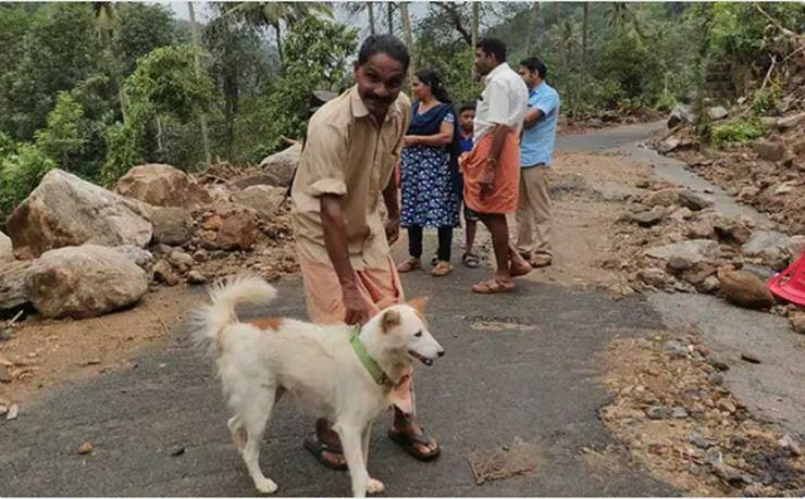 ФОТО: Куче херој спасило семејство од сигурна смрт