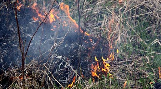 Пожар кај Скопската обиколница, зафатена површина од пет хектари