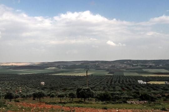 Извршени воздушни удари врз селски реони во Идлиб