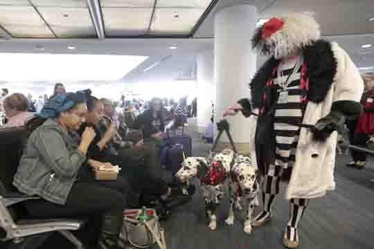 Дозволено носење марихуана на аеродромот во Лос Анџелес