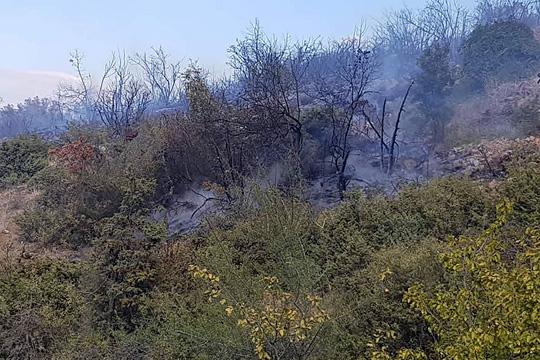 """Изгаснат пожарот во Националниот парк """"Галичица"""", гори викендичка во Љубаништа"""