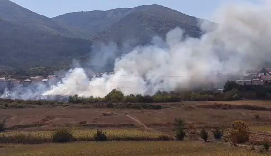 ВИДЕО: Пожар во Битола