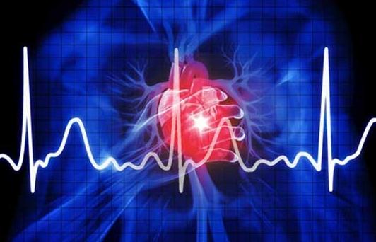 Од карадиоваскуларни болести во Србија дневно умираат по 147 луѓе