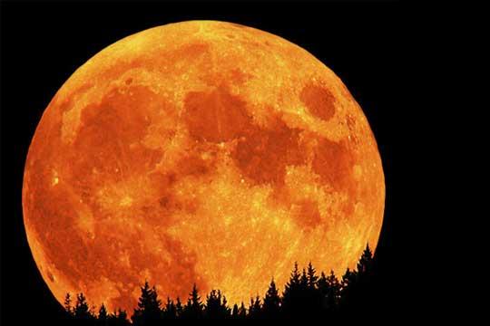 Три камчиња од Месечината продадени за 855 илјади долари