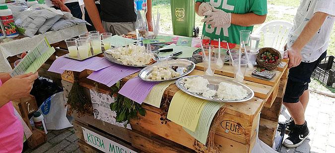 Дегустација, едукација и забава на Фестивалот на органска храна во Градски парк