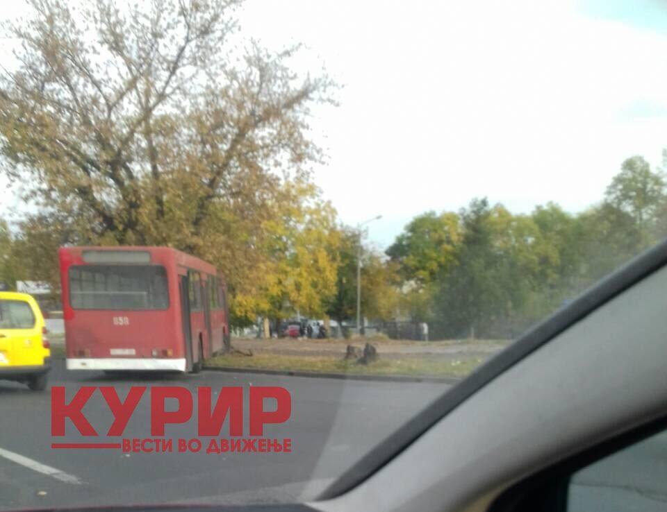 Автобус се заби во дрво – сообраќајна несреќа во Автокоманда (ФОТО)