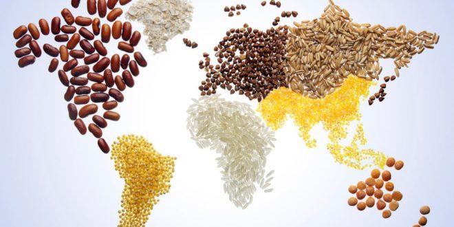 Одбележување на Светскиот ден на храната: 821 милион луѓе во светот гладуваат