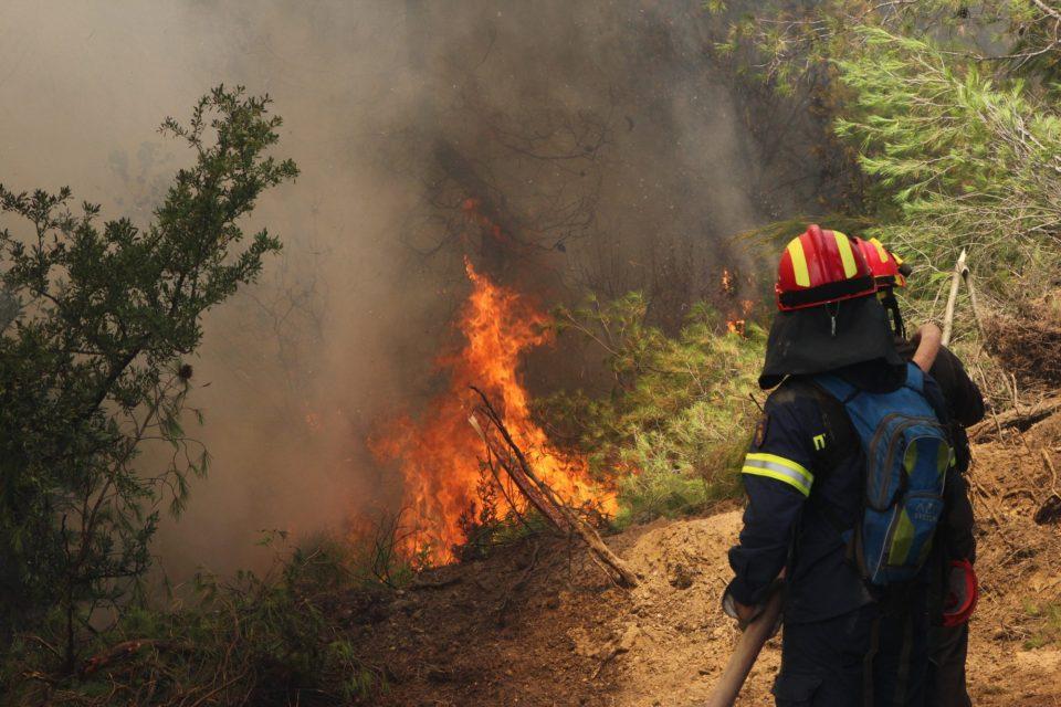 Уапсени две лица за намерно подметнување пожар на грчкиот остров Крит