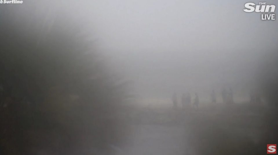 """ВО ЖИВО: Вонредна состојба- ураганот """"Мајкл"""" ја погоди Флорида (ВИДЕО)"""