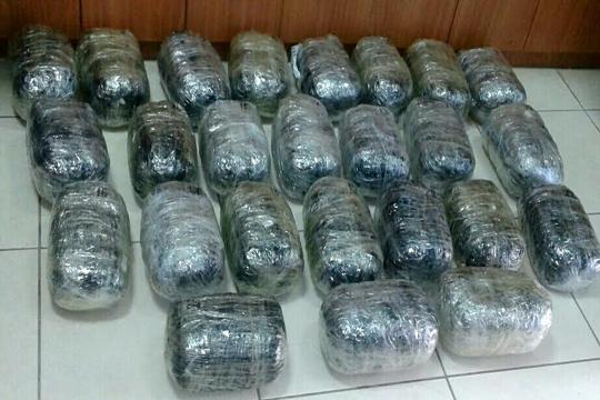 Во Црна Гора едно лице уапсено со 374 килограми марихуана