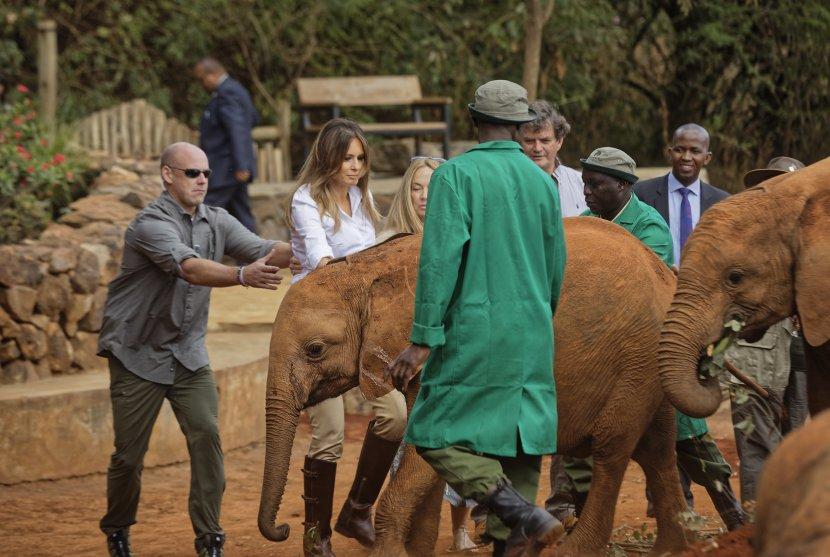 Меланија Трамп се исплаши од слон, па реагираше обезбедувањето (ВИДЕО)