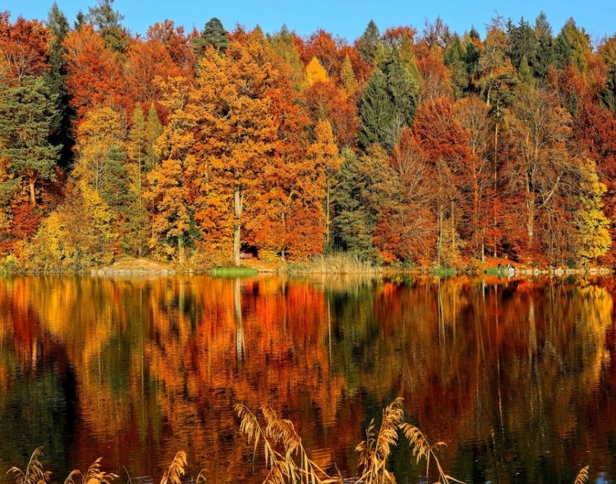 Почетокот на ноември го враќа летото во Македонија: Температури до 30 степени