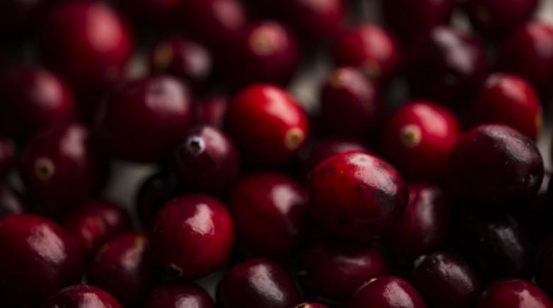 Брусница – вкусно овошје кое делува како антибиотик