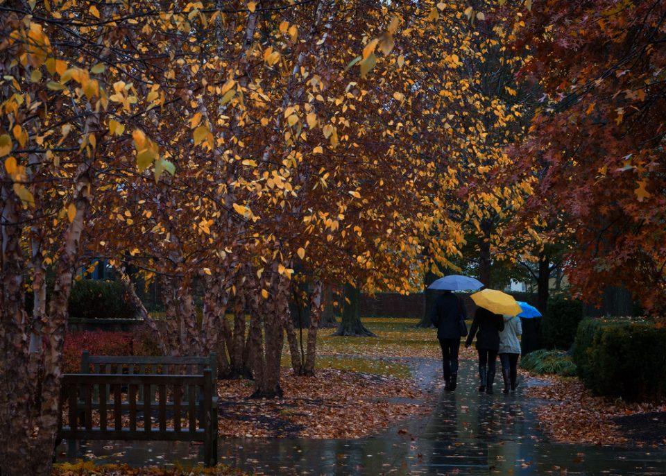 Облачно време со врнежи од дожд во попладневните часови