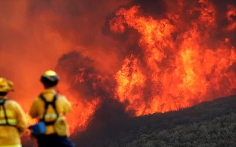 По ужасот во Калифорнија: 79 мртви, 700 исчезнати лица, 12.000 домови уништени