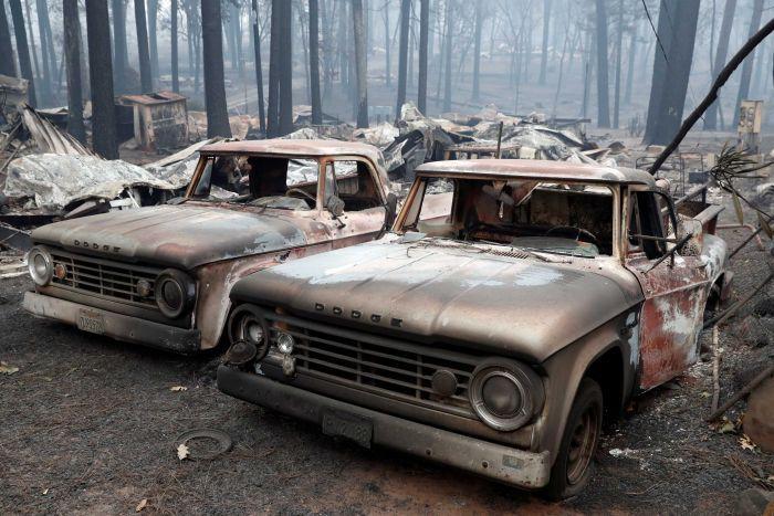 Штетата од пожарите во Калифорнија достигна над 11 милијарди долари