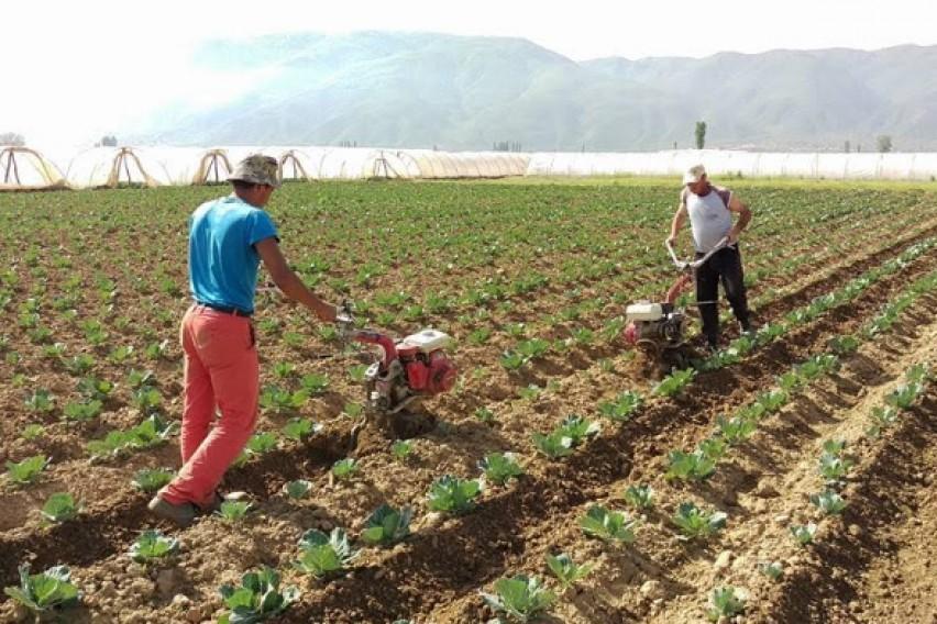 Прогресивниот данок ги вознемири и земјоделците!