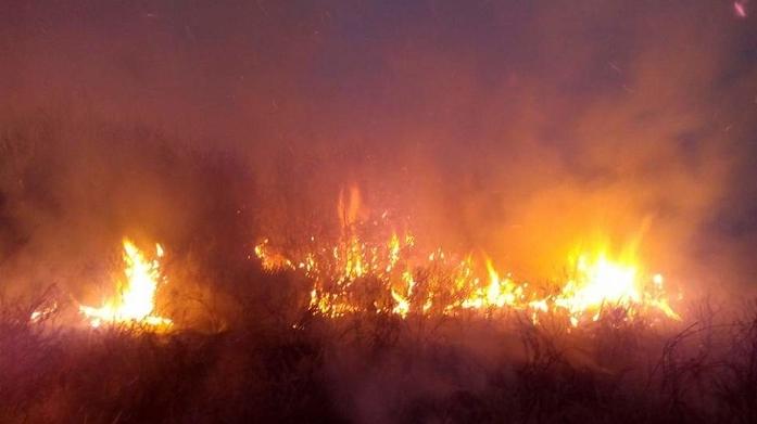 "Голем пожар  на ""Глобочица"", гореа два километри шума"