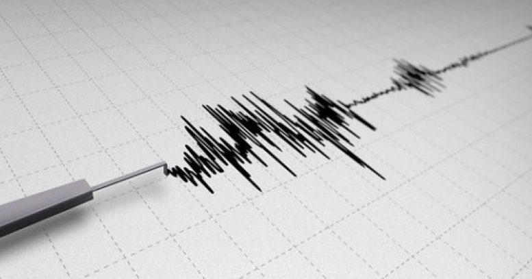 Два земјотреси за еден ден ја стресоа Струмица