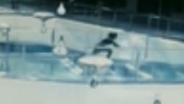 Како во хорор филм: Девојка се сопна и падна во базен полн со ајкули, а тоа што следуваше ќе ве остави во неверување (ВИДЕО)