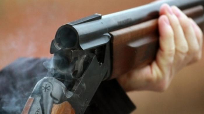 Со ловечка пушка му го убил кучето на комшијата