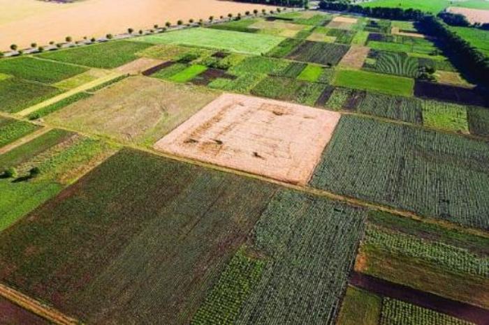 МЗШВ: Со новиот јавен повик за земјиште до три хектари, секоја педа земја се става во функција