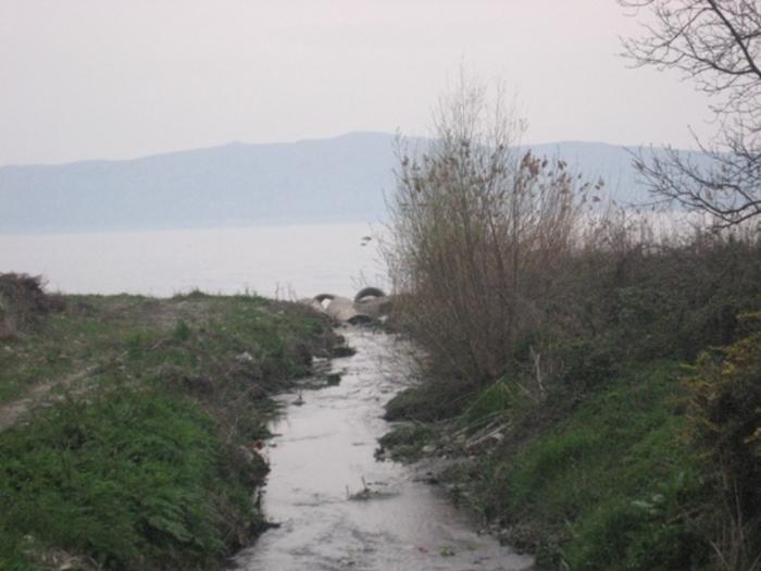 Еколошки инцидент во Охрид, реката Грашница обоена виолетово