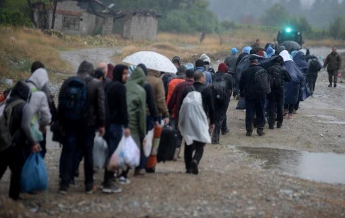 Албанија: Годинава азил побарале 4.095 Сиријци