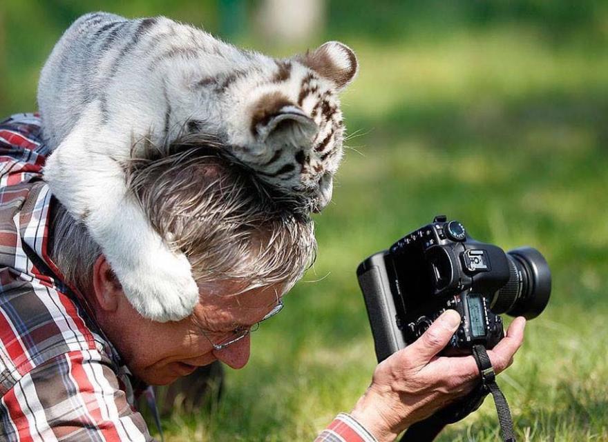ФОТО: Ќе ви го стопат срцето – диви животни кои се најдобри пријатели на фотографите