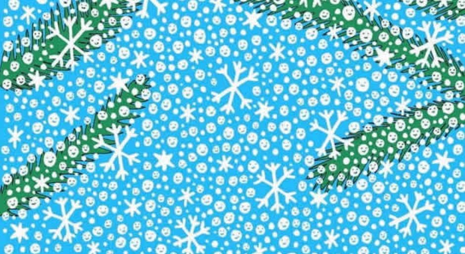 Тестирајте ја сопствената концентрација: Меѓу снежни топки и снегулки, дали ќе го пронајдете Снешко? (ФОТО)