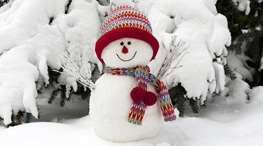 ФОТО: Временска прогноза за цел јануари