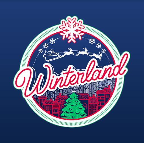 Новогодишната елка на плоштад ќе светне утре вечер