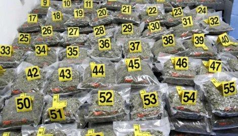 Запленето најголемо количество марихуана во историјата на Шпанија