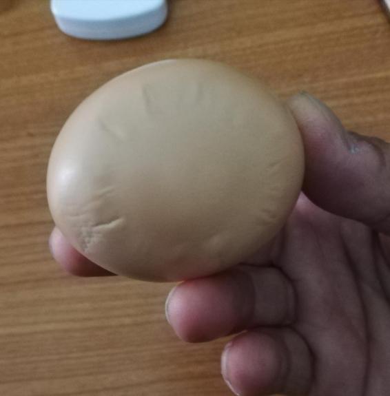 Во Гевгелија снесено јајце со сонцето од Кутлеш (ФОТО)