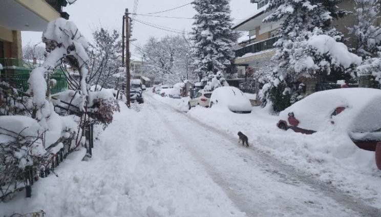 Студен бран и снег ги погодија централните и северните делови на Грција, има жртви