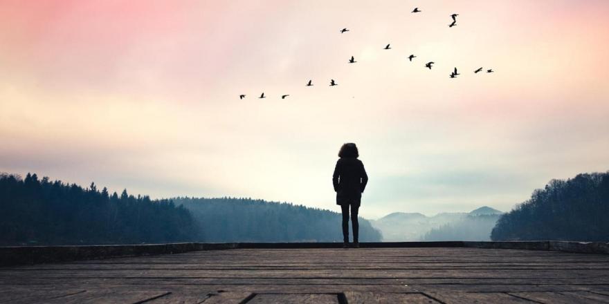 20 животни принципи до кои се придржува секоја Девица