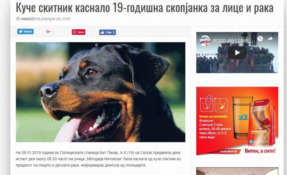 Шилегов наместо да се погрижи за кучињата скитници, ја префрла вината на минатата власт