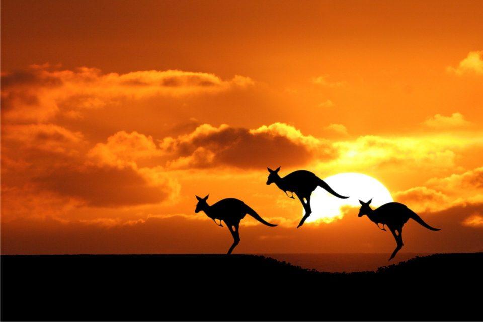 Температурата достигна и до 50 степени: По пеколното време нова катастрофа во Австралија- ова никој не го очекуваше (ФОТО)