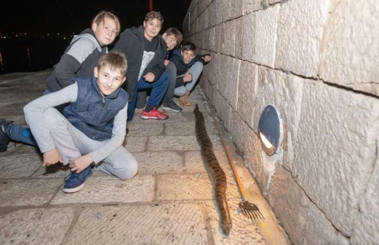 Деца од море извлекле змија долга 2,5 метри (ФОТО)