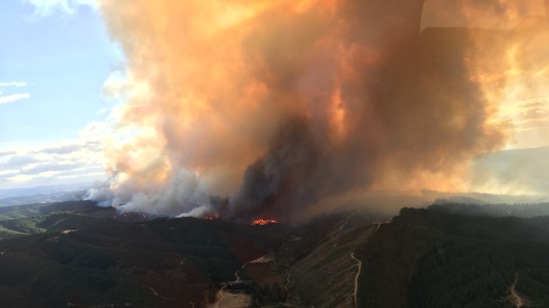 Голем пожар: Уништени домови, евакуирани жители на Нов Зеланд