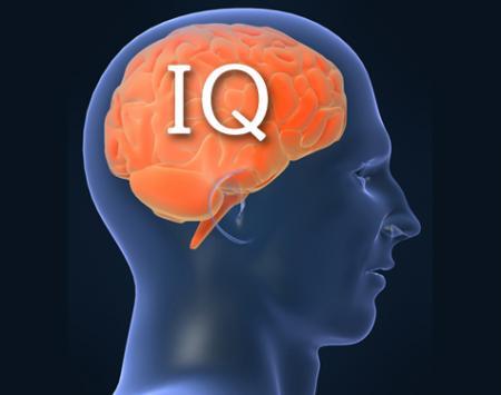 Пет начини како да си ја зголемите интелигенцијата