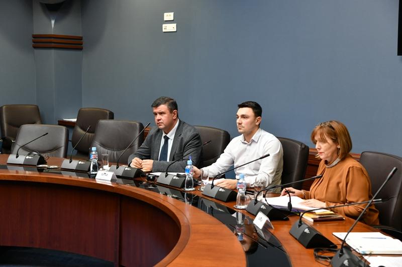 Мицевски оствари средба со претставници на Европскиот парламент