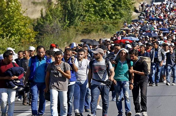 Зихофер очекува нов мигрантски бран, бара помош за Грција и Турција
