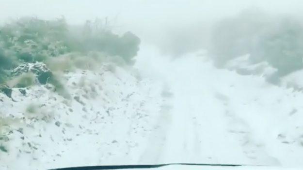 Падна снег и на Хаваи