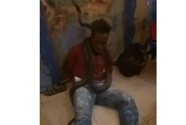Вознемирувачко видео: Невидена тортура, полицајци со змија мачат затвореник