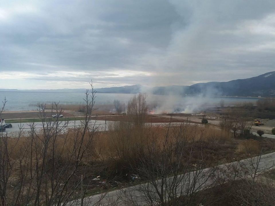 (ФОТО) Повторно гори трската кај струшкото крајбрежје